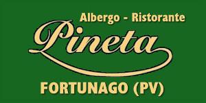 Banner-Pineta.jpg
