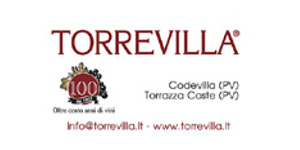 Banner-Torrevilla.jpg
